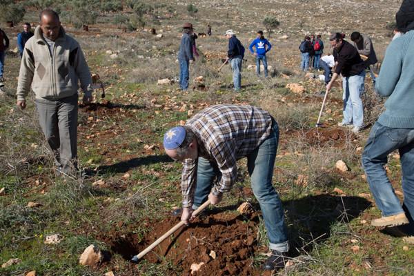 2/3 Une soixantaine de personnes étaient réunies pour l'évènement. 250 oliviers devaient être plantés. © TD/CTS