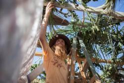 Que devient Sukkot dans la tradition chrétienne?
