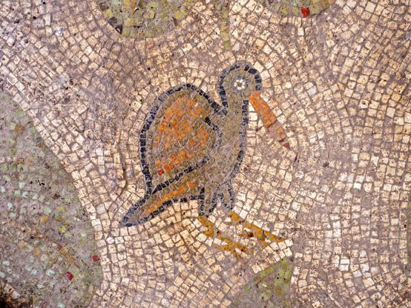 Détail du sol de mosaïque, avec un oiseau coloré©Assaf Peretz/Israel Antiquities Authority