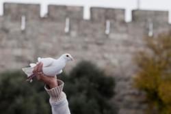 Israël a 70 ans: la prière des catholiques hébréophones