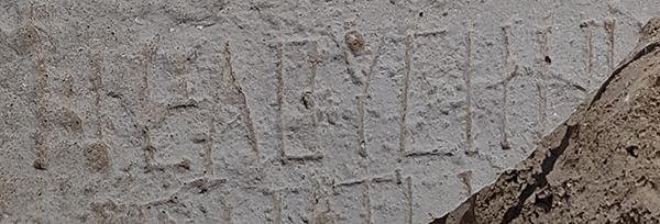 L'inscription grecque portant le nom de la ville d'Elusa (Halutza en hébreu) © Tali Erickson-Gini, AAI