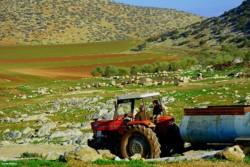 Israël veut saisir des terres, propriétés de l'Eglise latine