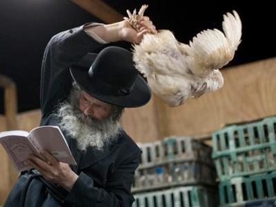 Le rite des Kapparot: une tradition juive qui bat de l'aile