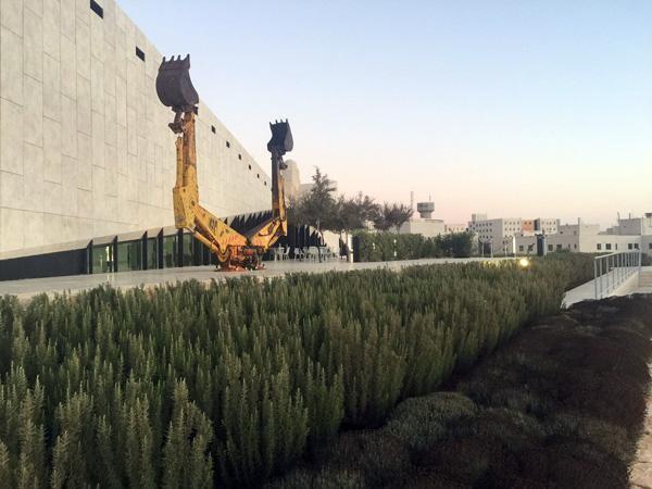 Une première exposition très politique au Musée palestinien
