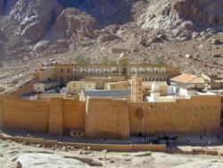 Sainte Catherine dans le Sinaï, une fleur dans le désert