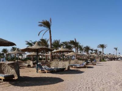 Insécurité en Égypte, les touristes désertent