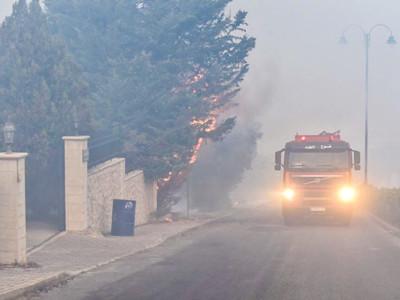 Catastrophe naturelle : le Liban vert sous la cendre grise