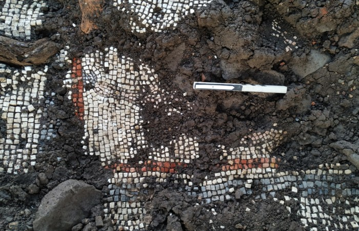 Golan : des mosaïques témoins de la vie juive du IIIe siècle