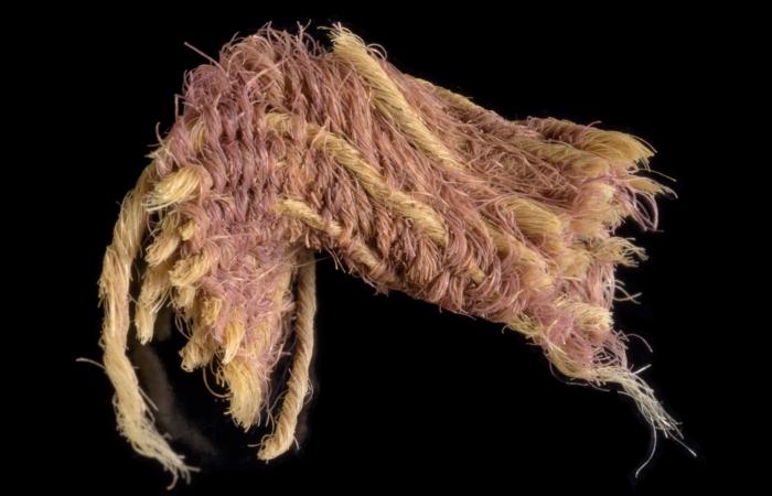 Fragment de tissu violet teint en pourpre Photo: Dafna Gazit, Autorité israélienne des antiquités