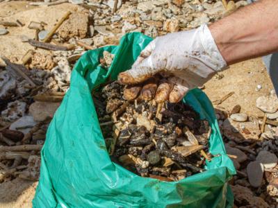 Israël face à la plus grosse marée noire de son histoire
