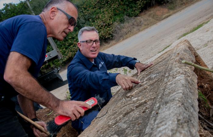 Oubliés il y a 25 ans, deux sarcophages romains viennent d'être redécouverts. Photo : Yoli Schwartz Israel Antiquities Authority
