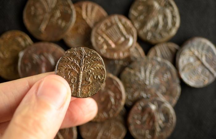 Pièces de monnaie de l'époque de Bar Kokhba 132-135 ap. J.-C. © Dafna Gazit, Israel Antiquities Authority