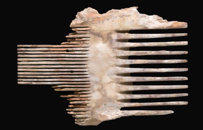 Peigne à poux vieux de 2000 ans © Clara Amit, Israel Antiquities Authority