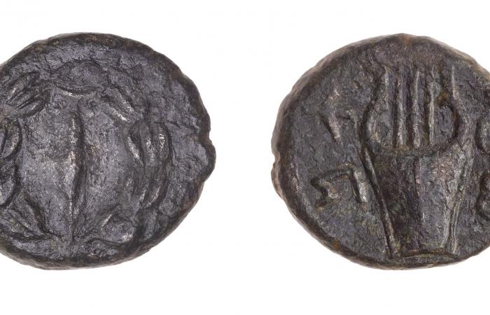 Pièce de monnaie d'environ 134-135 ap. J.-C. datant de la révolte de Bar-Kokhba, trouvée dans le Wadi Rashash ©Tal Rogovsky
